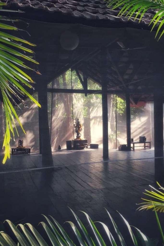 Yin Yoga Training / Immersion